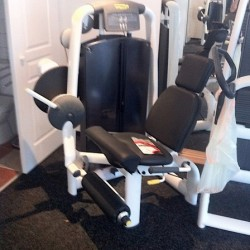 Technogym Selection leg extension