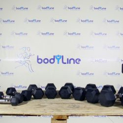 BodyLine Hex rubber dumbbells