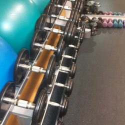 Life fitness iron dumbbells