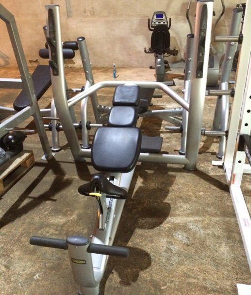 Technogym Selection Olympic Incline bench